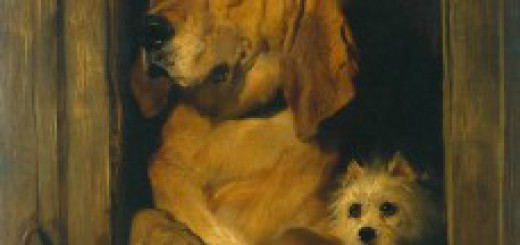 Dog-Portraits-Dignity-and-Impudence-229x300