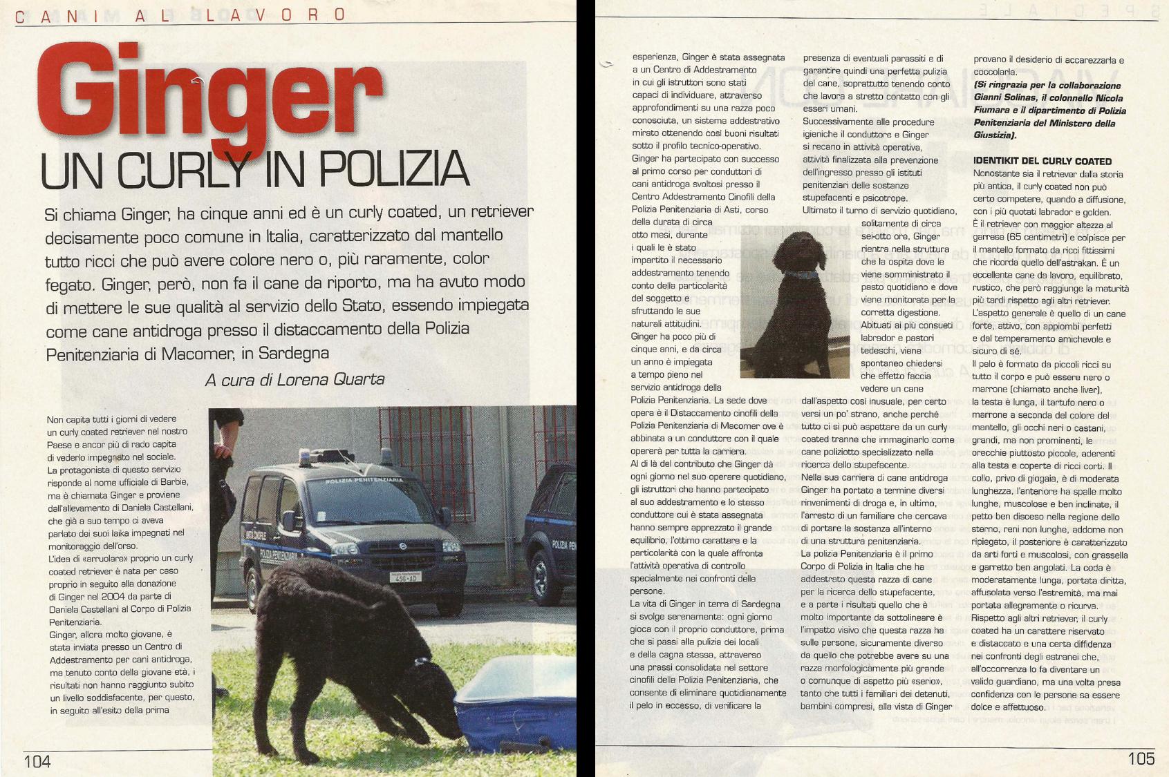 Ginger - Un Curly in Polizia