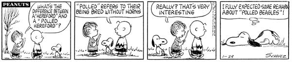 Snoopy il BEAGLE!