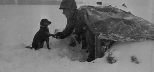 A Soldier of the 535th Anti-Aircraft Artillery Battalion with his pup during the Battle of the Bulge, Belgium, 1945
