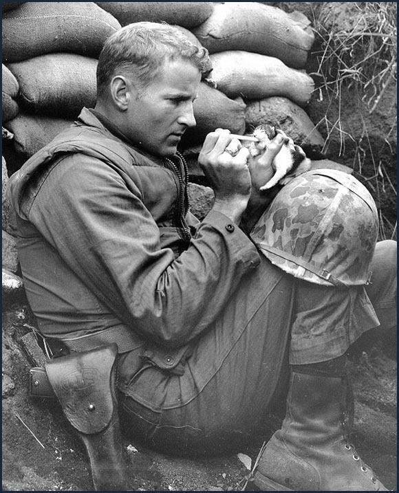 U.S. Marine feeding a kitten. 1943