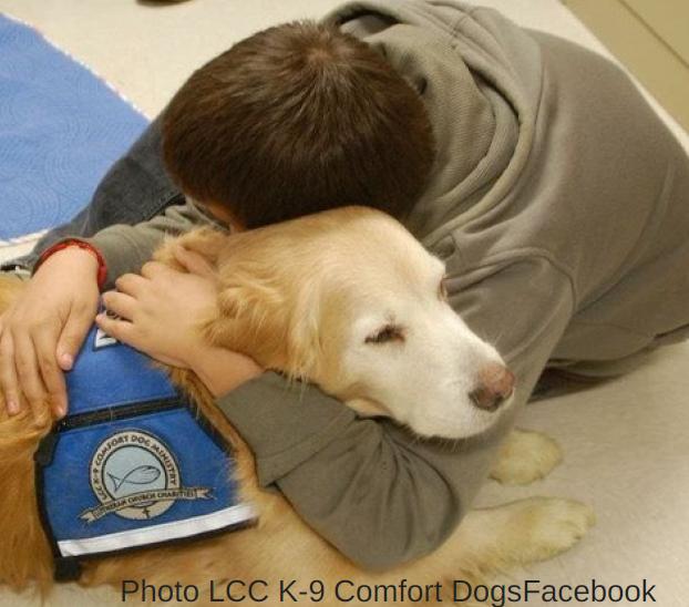 IL MIGLIOR AMICO DELL'UOMO Cani da assistenza e servizio