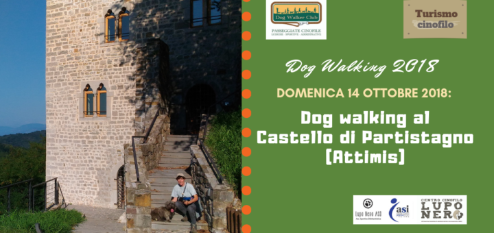 dog walking per sito