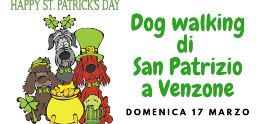 HEADER dog walking San Patrizio a Venzone