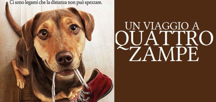 Un-viaggio-a-quaatro-zampe-banner